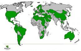 Kekkilä İhracat Yapılan Ülkeler